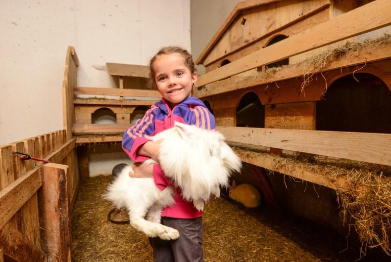 Streichelzoo Urlaub Hase Bauernhof