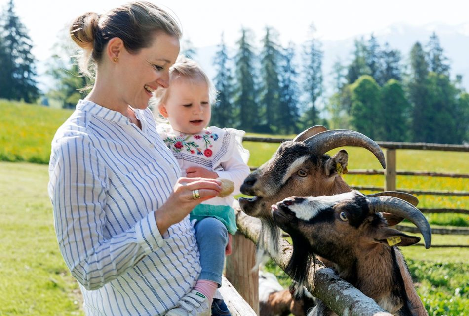 Ramsbergerhof Ziegen mit Kind